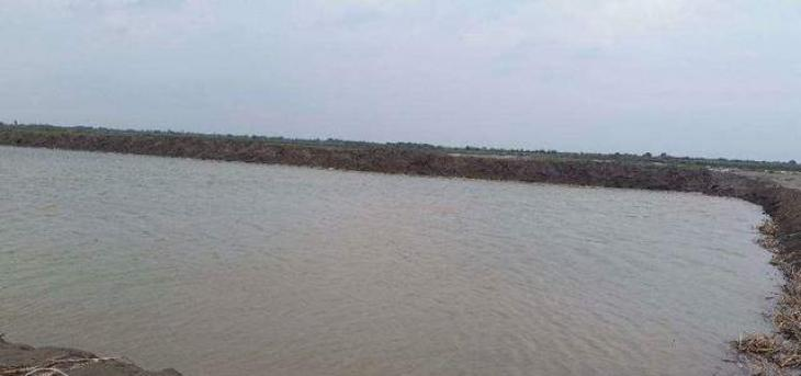 Fish Hatchery To Be Established At Silanwali - UrduPoint
