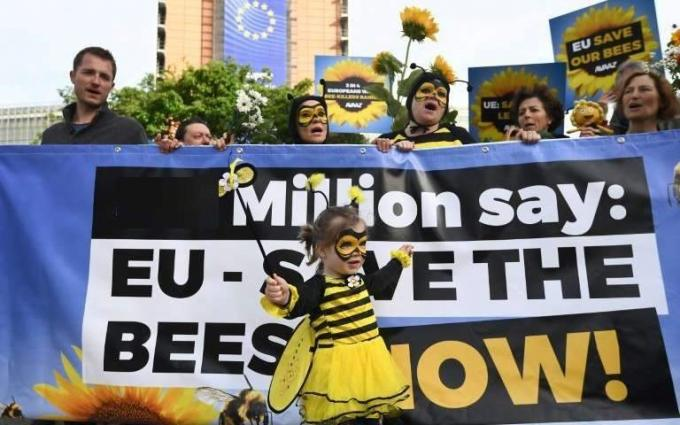 European Union Bans Bee-Killing Neonicotinoid Pesticides