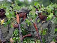 8 people beheaded by suspected Kamuina Nsapu militia in central C ..