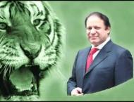 PMLN feared to reach its conclusion amid party differences