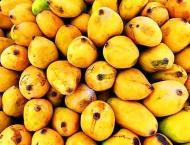 Pakistanis consider 'Mango' most favorite fruit during summer: Re ..