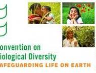 International Biodiversity Day to be marked  tomorrow