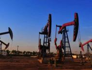Unprecedented growth in petroleum sector: A feather in PML-N govt ..
