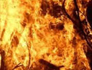 Fire erupts in Lwaghar forest region in Karak