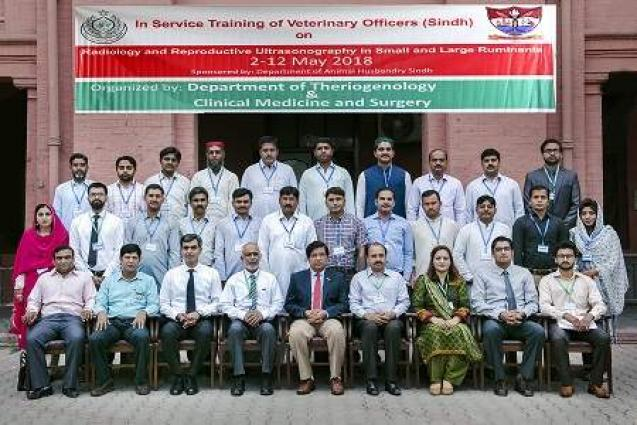 UVAS trains Sindh Veterinary Officers on Radiology & Reproductive Ultrasonography in Small and Large Ruminants