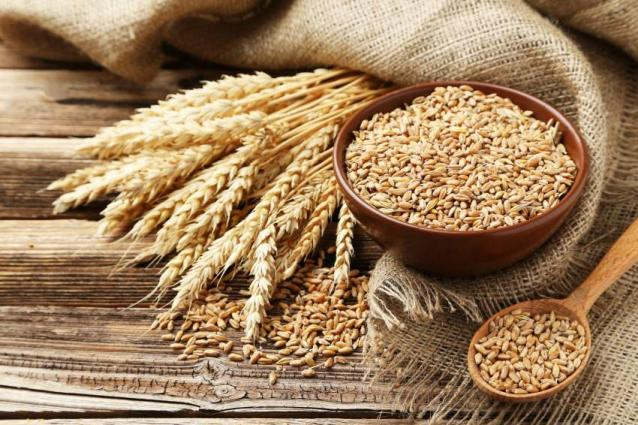 43.55% wheat target achieved in Faisalabad