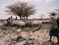 Hunger surges amid deadly conflicts, poor weather conditions in m ..