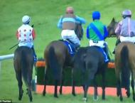 Brazilian jockey banned for punching former champion jockey