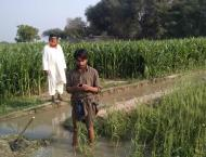 Pakistan Council of Research in Water Resource (PCRWR)  to increa ..
