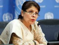 Dr Shamshad calls for 5-year roadmap for capital market's develop ..