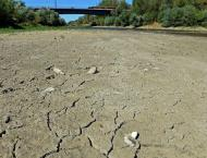 Drought haunts farmers in Poland, Baltic states