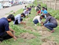 Small traders to get involved in plantation campaign in Karachi