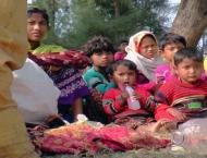 EU sanctions senior Myanmar military over Rohingya abuses