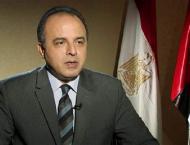 June 2013 revolution established foundations of new Egypt: Egypti ..