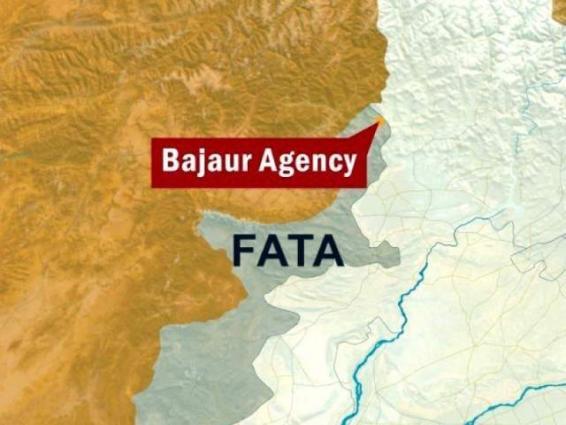 Two shot dead at Bajaur