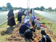 Federal Minister for Climate Change inaugurates tree plantation c ..