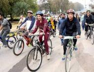 Cycling-lane's dream, still unrealized in capital
