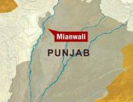 20 suspects arrested, hashish seized from Mianwali