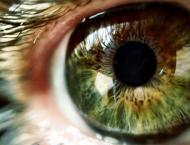 Scientists develop eye drop that can save sight of millions of pe ..