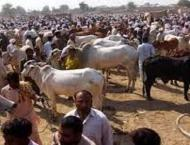 Eid-ul-Azha likely to be Celebrated on August 22
