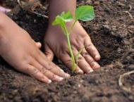 Tree plantation campaign by special students on August 14