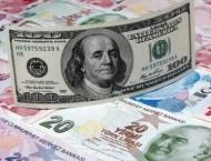 Turkey lira loses 5% against dollar, hits record low
