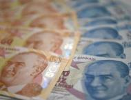 Turkish lira, equities enjoy modest recovery