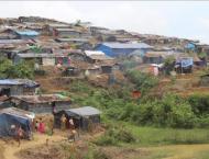 Turkish NGO sets up bamboo houses for Rohingya
