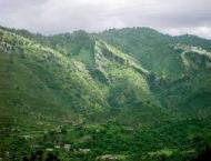 Seed balls plantation launched on Margalla Hills to restore its g ..
