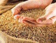 Enough stock of wheat available in GB: department