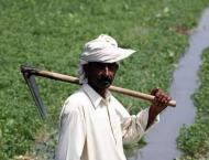 PIPIP project under way to facilitate farmers