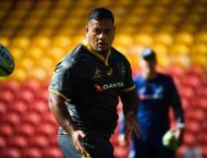 Wallaby 'Tongan Thor' out of Bledisloe opener: report