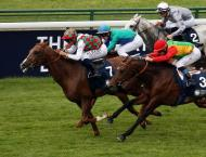 Russia to host sixth leg of UAE President's Cup for Purebred Ar ..