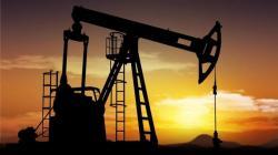 اکتشاف احتیاطیات النفط و الغاز في سجاول