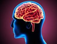 Immune cells in brain play significant role in schizophrenia: Stu ..