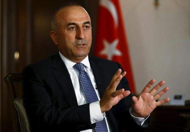 Turkey Ready to Cooperate With Russia to Eliminate Terrorists in Syrian Idlib - Ankara