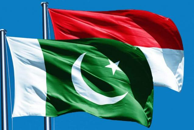 Pakistan-Indonesian bilateral trade to jump 9 bln dollar by 2019: envoy