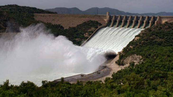 NESPAK employees to donate one-day salary in dam fund