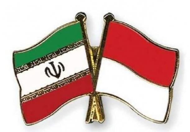 Iranian, Indonesian MPs call for development of ties