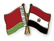 Belarus, Egypt discuss joint venture in video games production