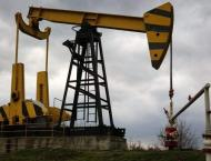 OPEC Forecasts Non-OPEC Oil Supply Growth to Increase by 200,000  ..