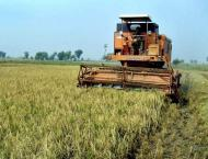Govt introducing reforms in agriculture sector: Dasti