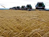 Russia's Annual Grain Harvest Must Reach 137.5Mln Tonnes by 2024  ..