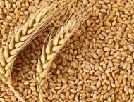 Russia Ready to Increase Export of Grain, Start Delivering Meat t ..
