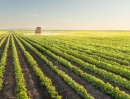 Abu Dhabi gathers agricultural sector leaders to address global f ..