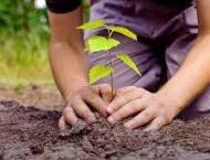 600,000 saplings planted in district: Deputy Commissioner Muzaffa ..
