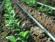 Drip irrigation project could not achieve success due to higher c ..
