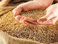 Spokesperson rejects news as false about underweight wheat bags s ..