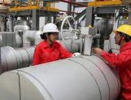 Chinese private enterprises cash in on global oil and gas busines ..