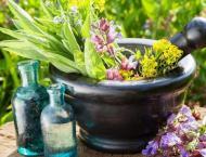 877,000 Kg of Iranian medicinal plants exported